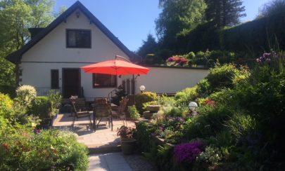 Doppelhaushälfte mit liebevoll gestaltetem Garten 45136 Essen / Bergerhausen, Doppelhaushälfte